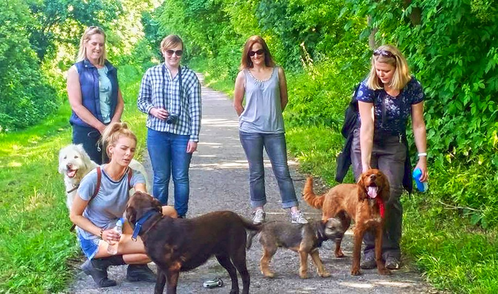 The Avacta Animal Health team with their dogs